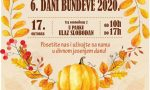 """Jesenji festival – 6. """"Dani bundeve"""" u Kuli"""